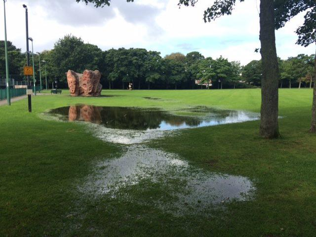 Severe saturated ground within Victoria Park